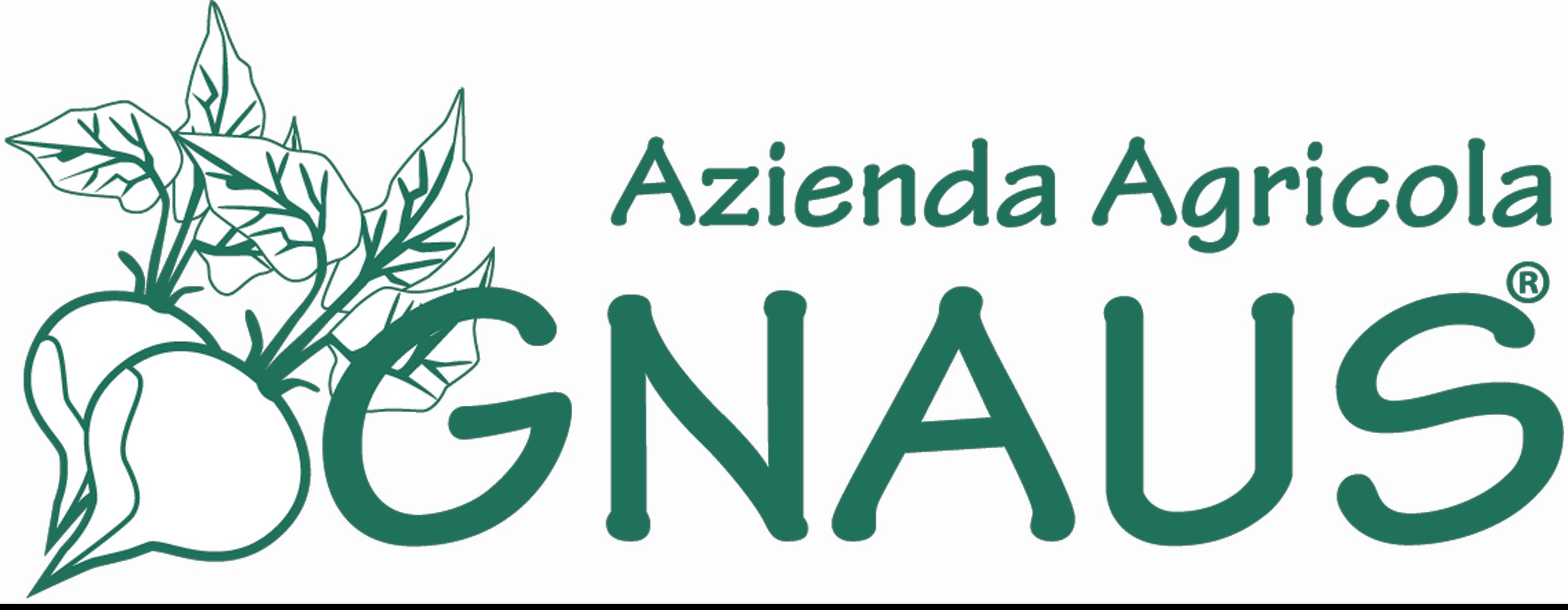gnaus.com